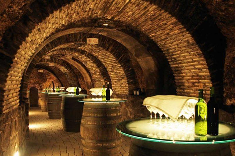 Domaine Bois de la Gineste also arranges wine tasting events.