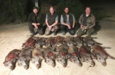 Evening hunt for four hunters